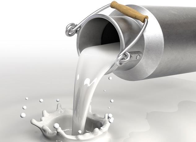Çiğ Sütün Arzına Dair Tebliğ